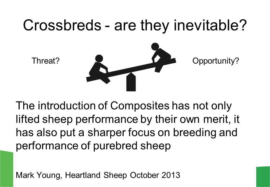 Crossbreds - are they inevitable? The introduction of Composites has not only lifted sheep performance by their own merit, it has also put a sharper f