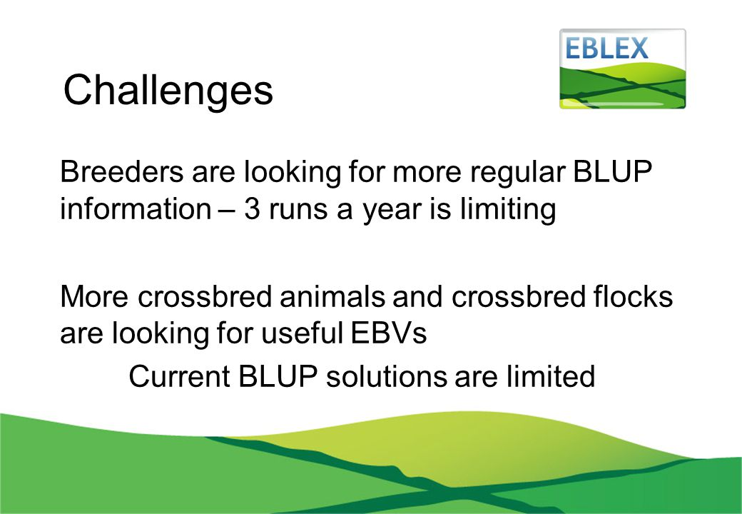 Challenges Breeders are looking for more regular BLUP information – 3 runs a year is limiting More crossbred animals and crossbred flocks are looking