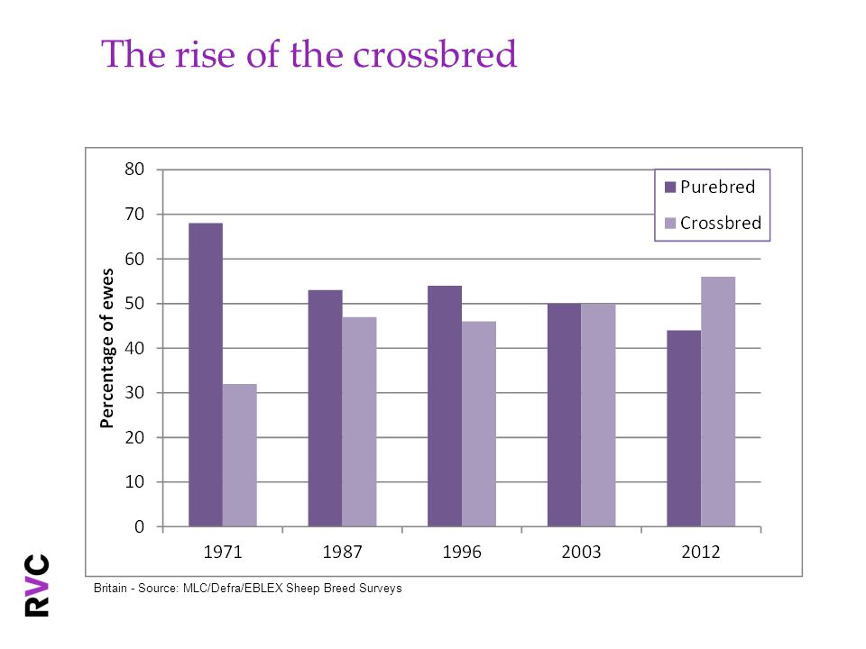 Changing hill breed numbers Hill ewes as a proportion of all ewes declined from 57% in 1971 to 31% in 2012