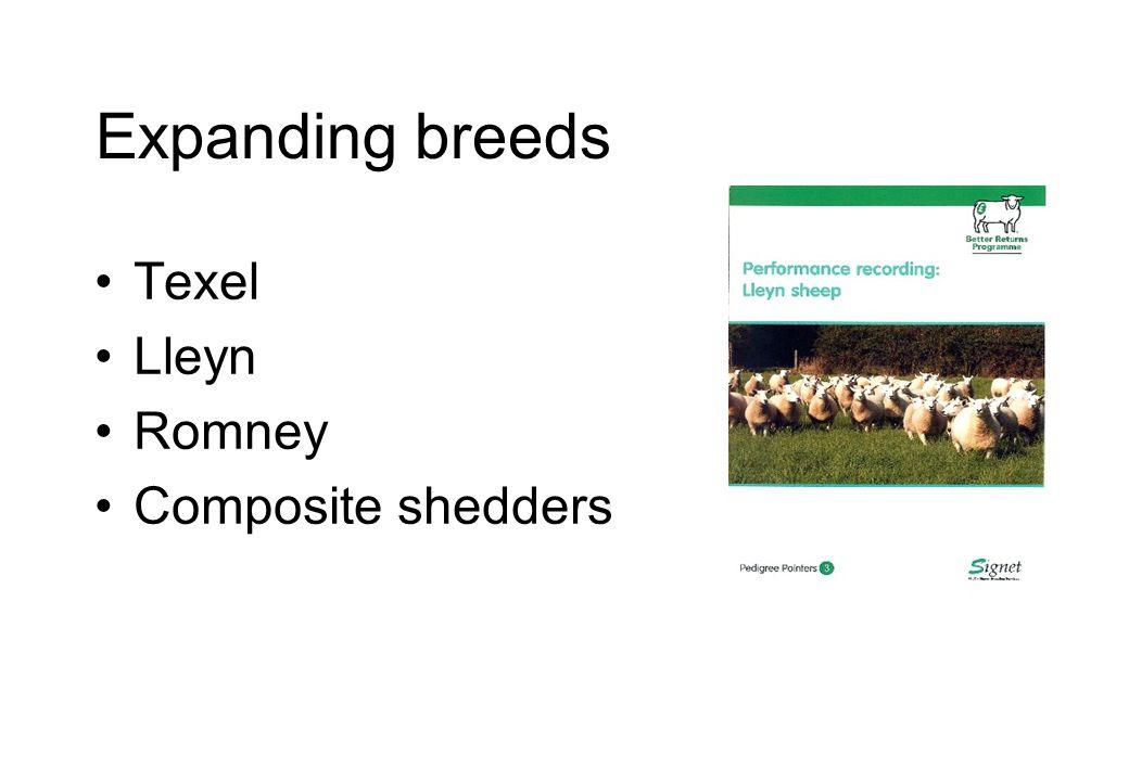 Expanding breeds Texel Lleyn Romney Composite shedders