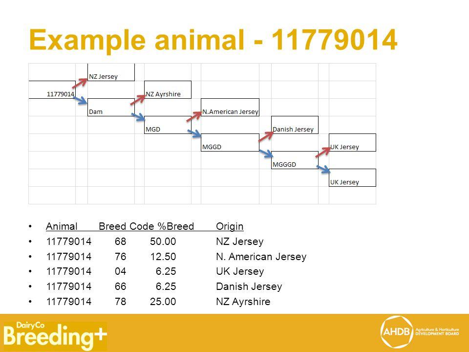 Example animal - 11779014 Animal Breed Code %BreedOrigin 11779014 68 50.00 NZ Jersey 11779014 76 12.50 N.