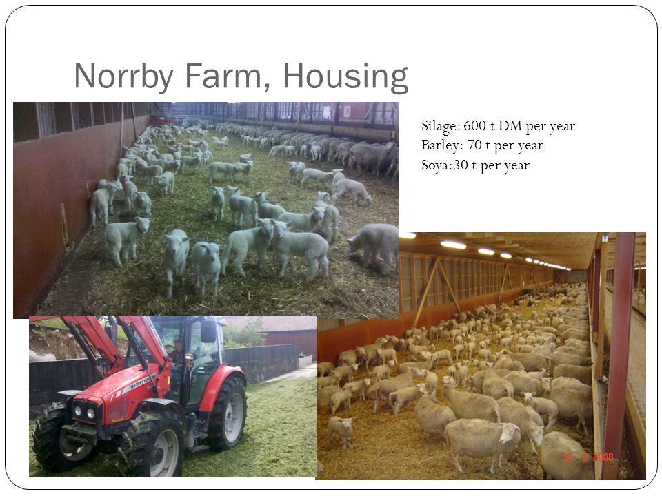 Norrby Farm, Housing Silage: 600 t DM per year Barley: 70 t per year Soya:30 t per year
