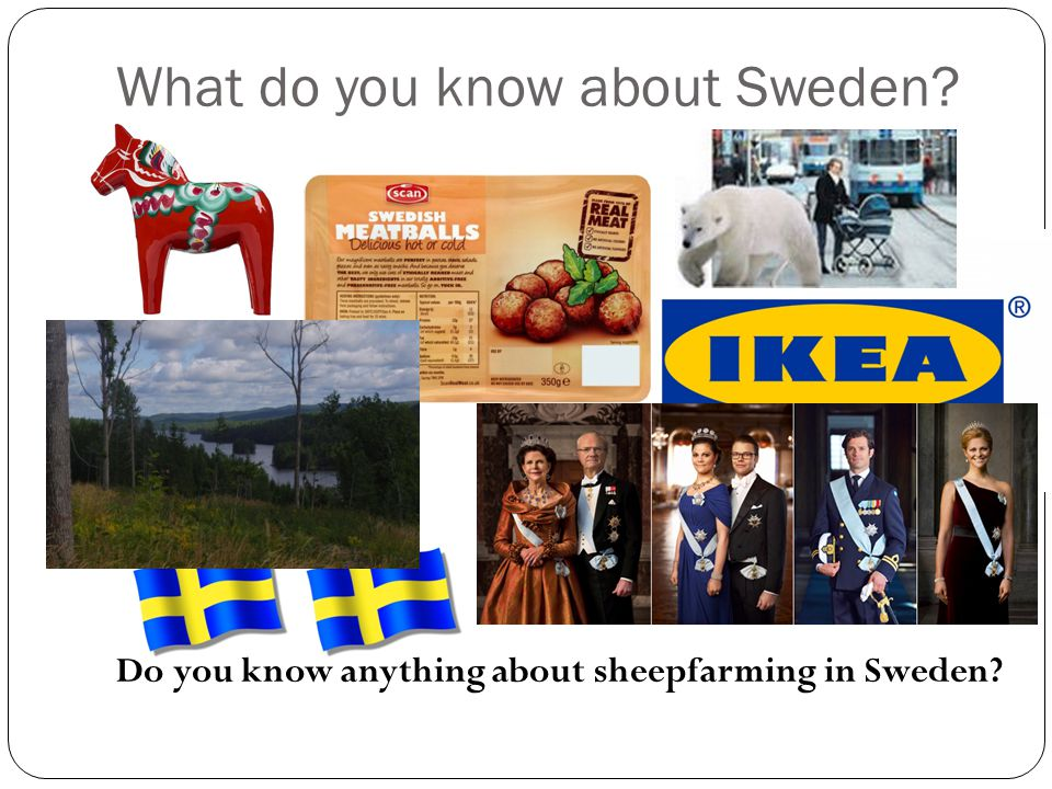 What do you know about Sweden? Do you know anything about sheepfarming in Sweden?