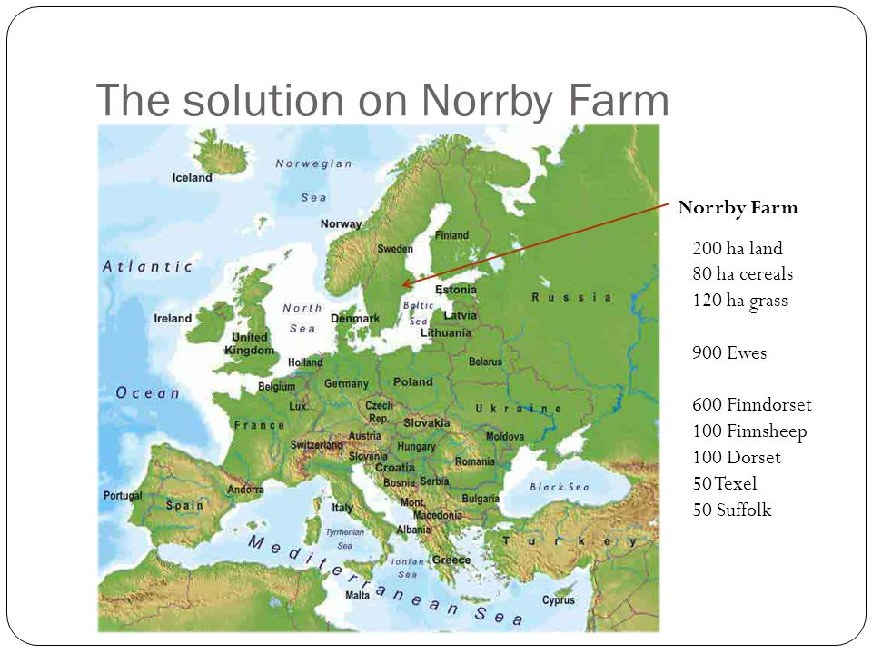The solution on Norrby Farm Norrby Farm 200 ha land 80 ha cereals 120 ha grass 900 Ewes 600 Finndorset 100 Finnsheep 100 Dorset 50 Texel 50 Suffolk