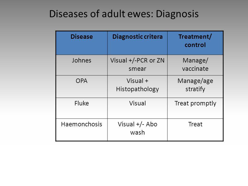 Diseases of adult ewes: Diagnosis DiseaseDiagnostic criteraTreatment/ control JohnesVisual +/-PCR or ZN smear Manage/ vaccinate OPAVisual + Histopatho