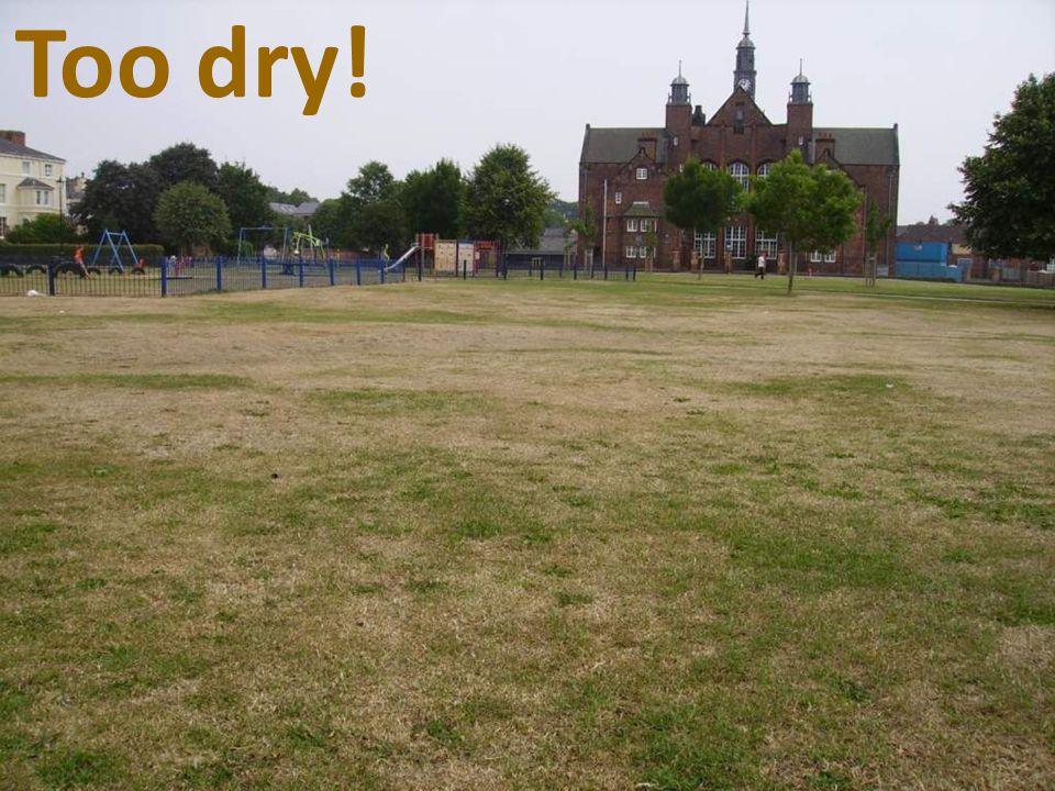 Too dry!