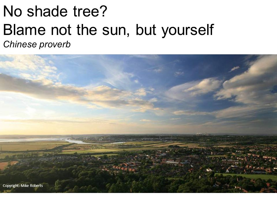 Copyright: Mike Roberts No shade tree Blame not the sun, but yourself Chinese proverb