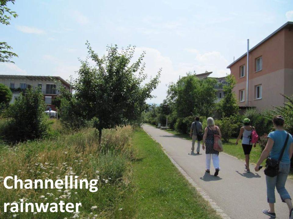 Capturing & re-using rainwater