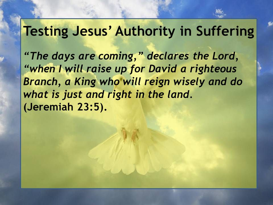 Testing Jesus' Authority in Suffering The days are coming, declares the Lord, when I will raise up for David a righteous Branch, a King who will reign wisely and do what is just and right in the land.