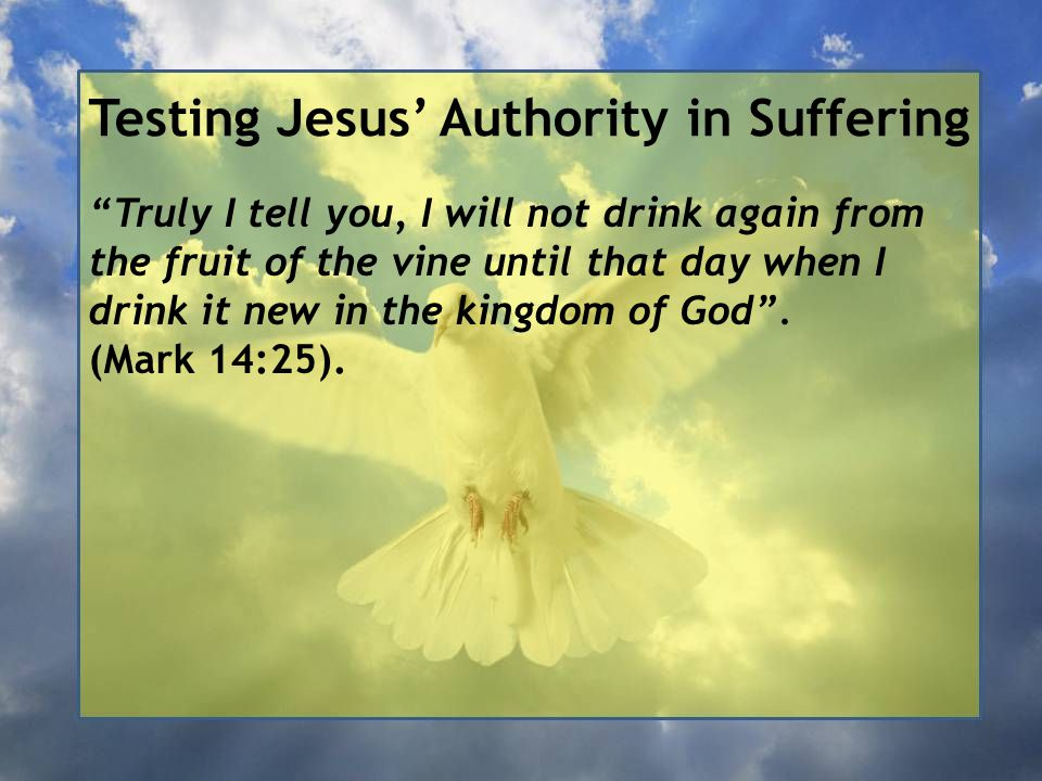 """Testing Jesus' Authority in Suffering """"Truly I tell you, I will not drink again from the fruit of the vine until that day when I drink it new in the k"""