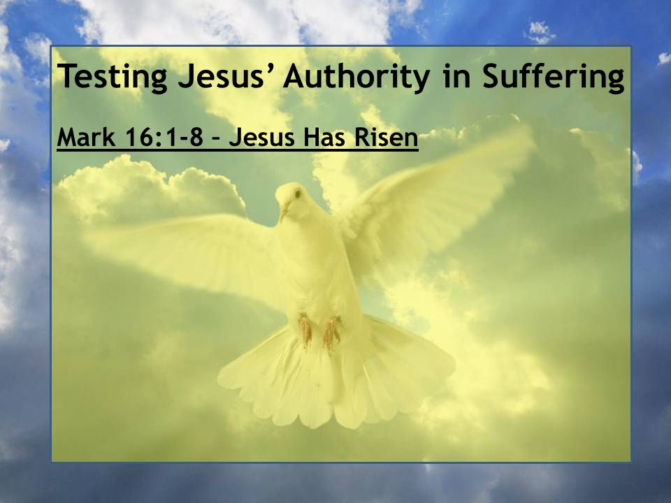 Testing Jesus' Authority in Suffering Mark 16:1-8 – Jesus Has Risen