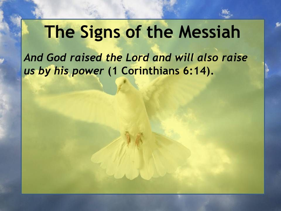 The Signs of the Messiah And God raised the Lord and will also raise us by his power (1 Corinthians 6:14).