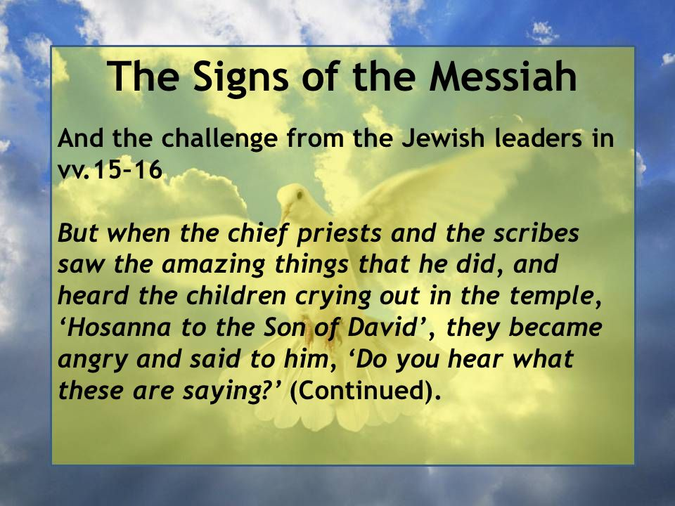 The Signs of the Messiah And the challenge from the Jewish leaders in vv.15–16 But when the chief priests and the scribes saw the amazing things that he did, and heard the children crying out in the temple, 'Hosanna to the Son of David', they became angry and said to him, 'Do you hear what these are saying ' (Continued).