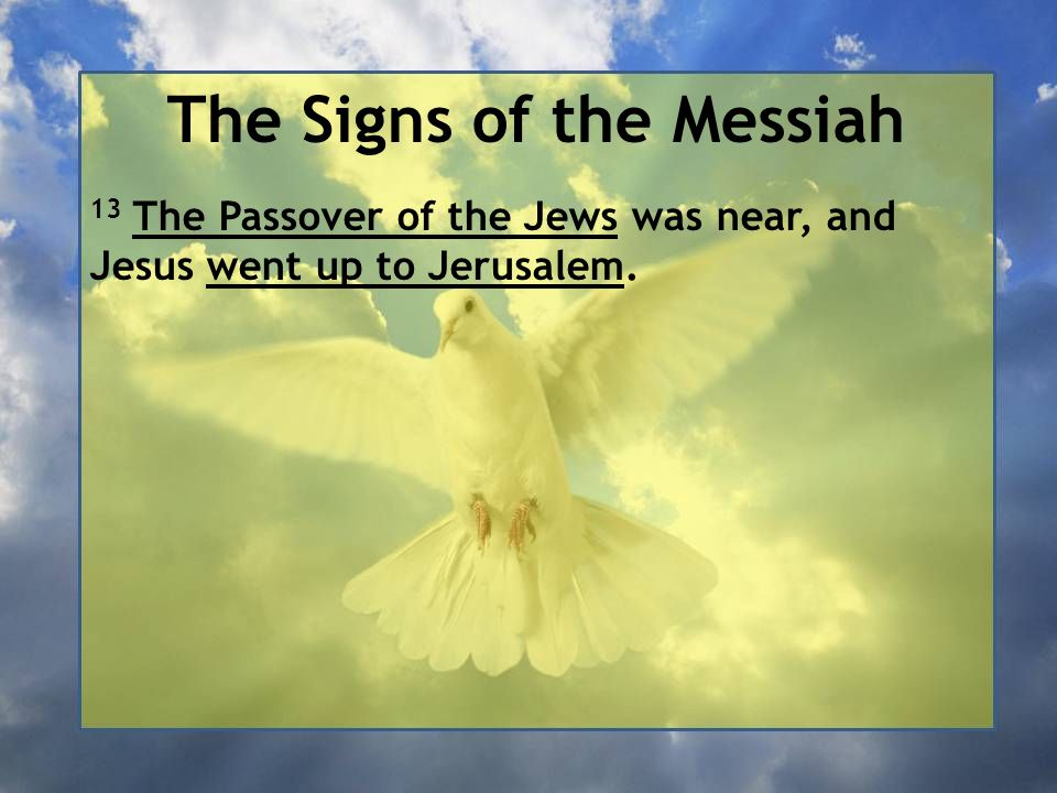 The Signs of the Messiah 13 The Passover of the Jews was near, and Jesus went up to Jerusalem.