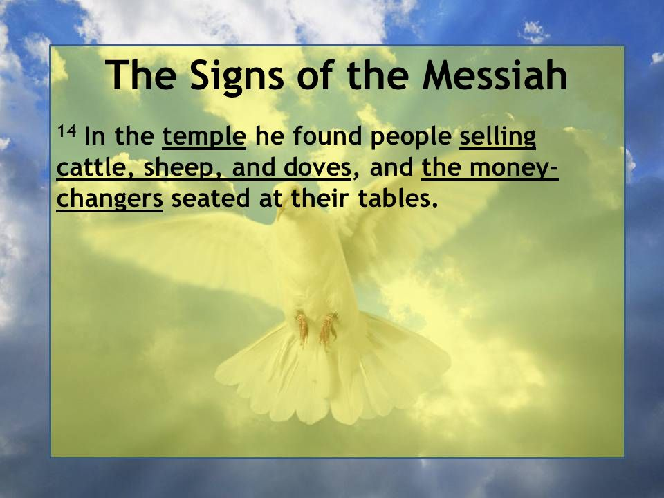 The Signs of the Messiah 14 In the temple he found people selling cattle, sheep, and doves, and the money- changers seated at their tables.