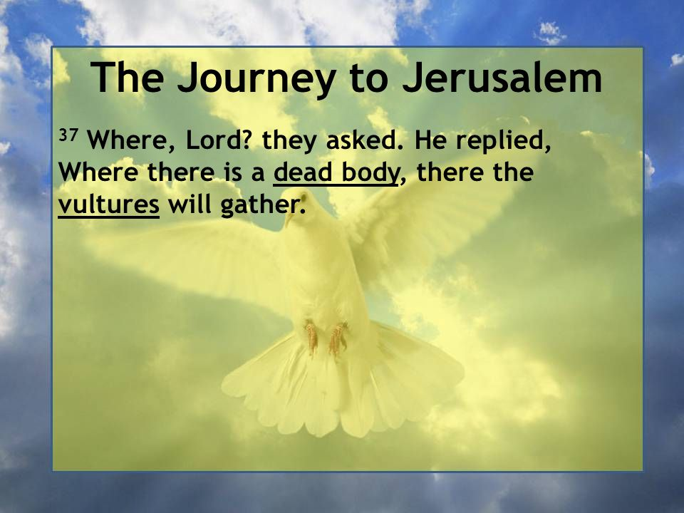 The Journey to Jerusalem 37 Where, Lord? they asked. He replied, Where there is a dead body, there the vultures will gather.
