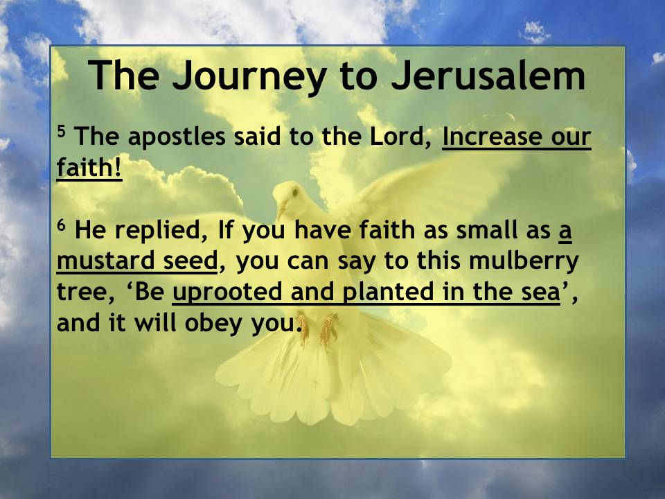 The Journey to Jerusalem 5 The apostles said to the Lord, Increase our faith! 6 He replied, If you have faith as small as a mustard seed, you can say