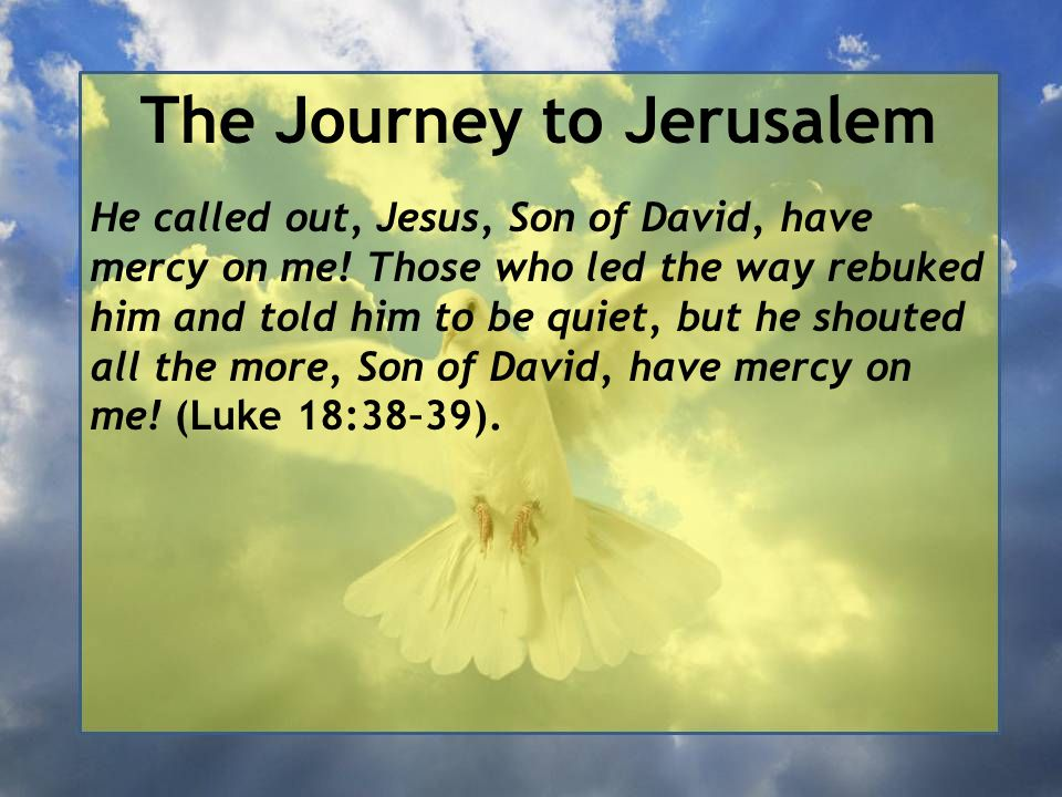 The Journey to Jerusalem He called out, Jesus, Son of David, have mercy on me! Those who led the way rebuked him and told him to be quiet, but he shou