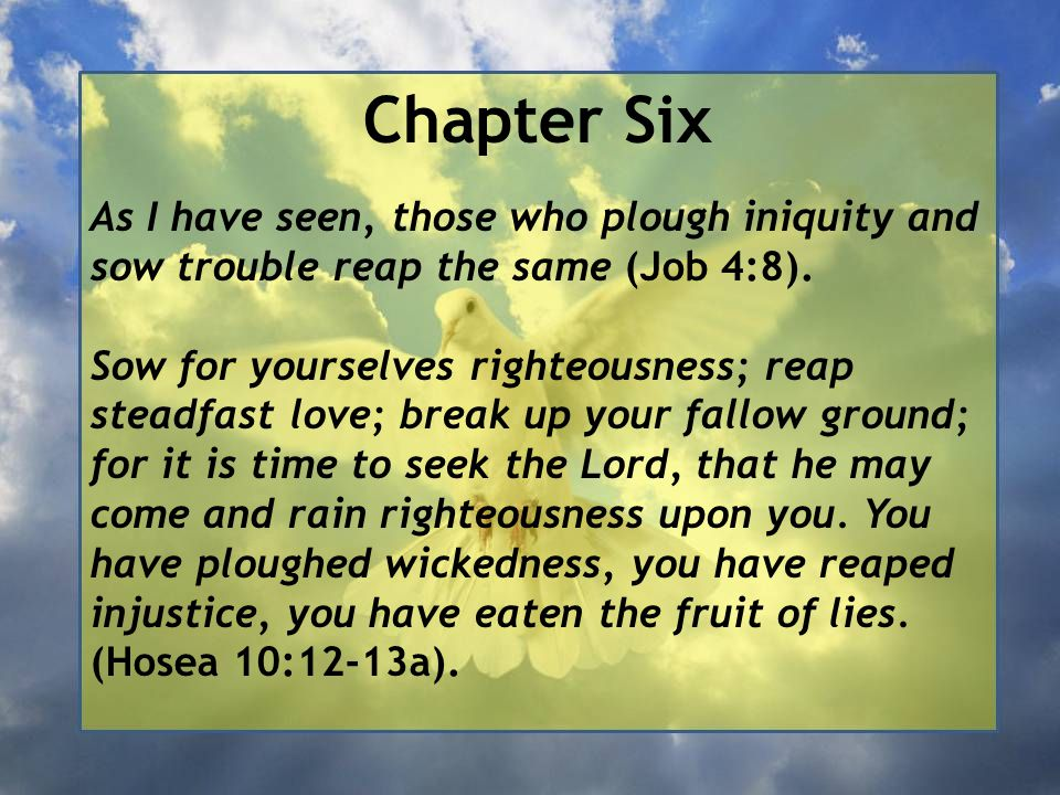 Chapter Six As I have seen, those who plough iniquity and sow trouble reap the same (Job 4:8).