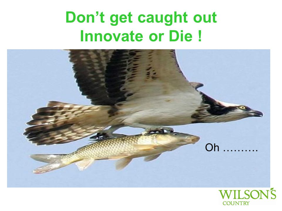 Don't get caught out Innovate or Die ! Oh ……….