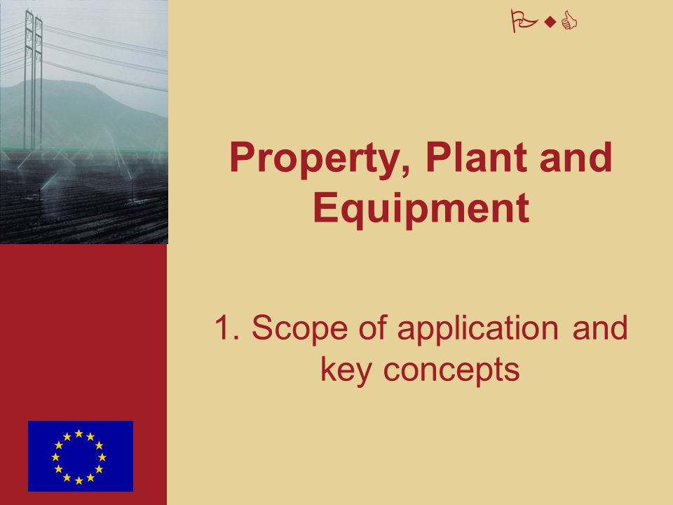PwC Property, Plant and Equipment 6. E.C. specific implications