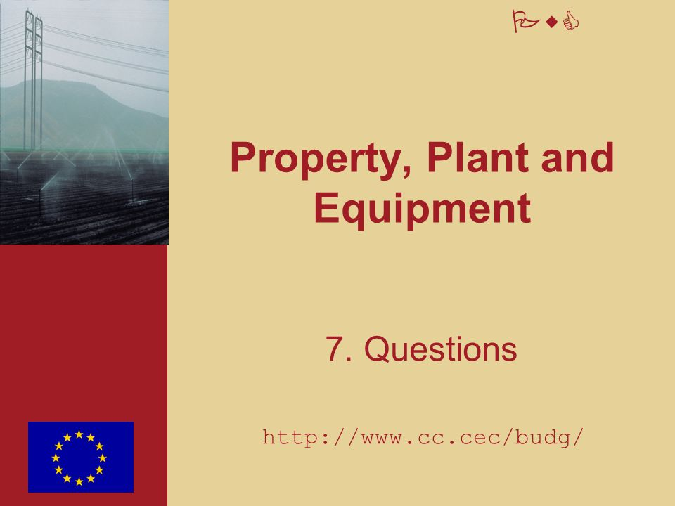 PwC Property, Plant and Equipment 7. Questions http://www.cc.cec/budg/