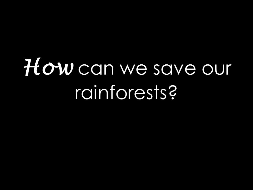How can we save our rainforests