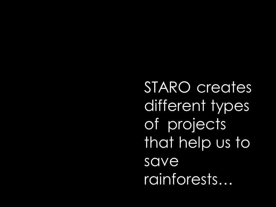 STARO creates different types of projects that help us to save rainforests…