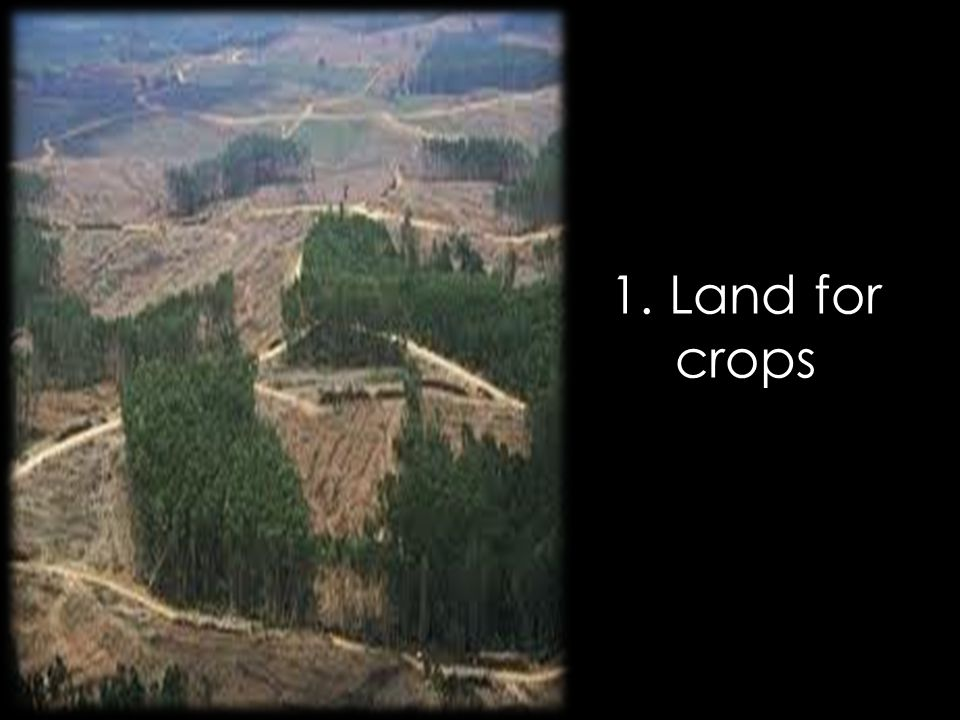 1. Land for crops