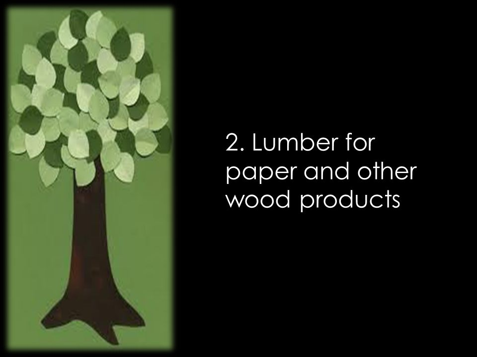 2. Lumber for paper and other wood products