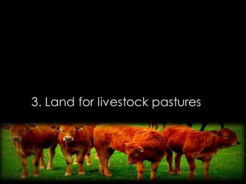 3. Land for livestock pastures