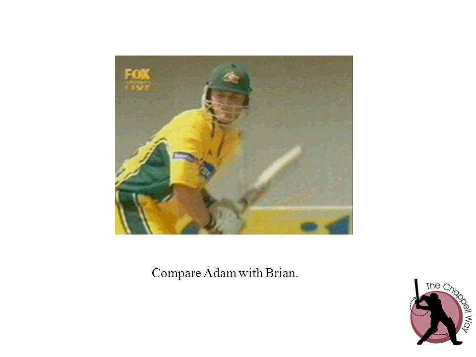 Compare Adam with Brian.