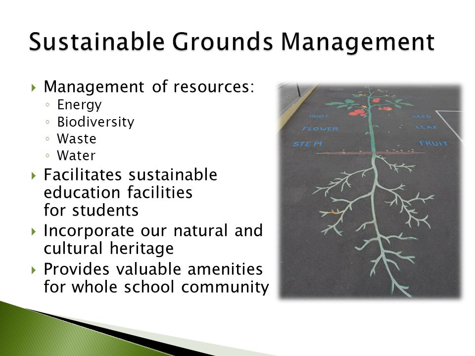  Management of resources: ◦ Energy ◦ Biodiversity ◦ Waste ◦ Water  Facilitates sustainable education facilities for students  Incorporate our natural and cultural heritage  Provides valuable amenities for whole school community