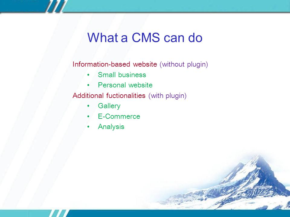 What a CMS can do Information-based website (without plugin) Small business Personal website Additional fuctionalities (with plugin) Gallery E-Commerce Analysis
