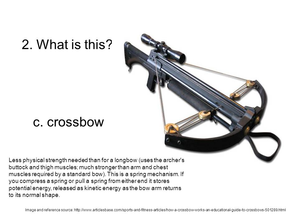 2. What is this? c. crossbow Less physical strength needed than for a longbow (uses the archer's buttock and thigh muscles; much stronger than arm and