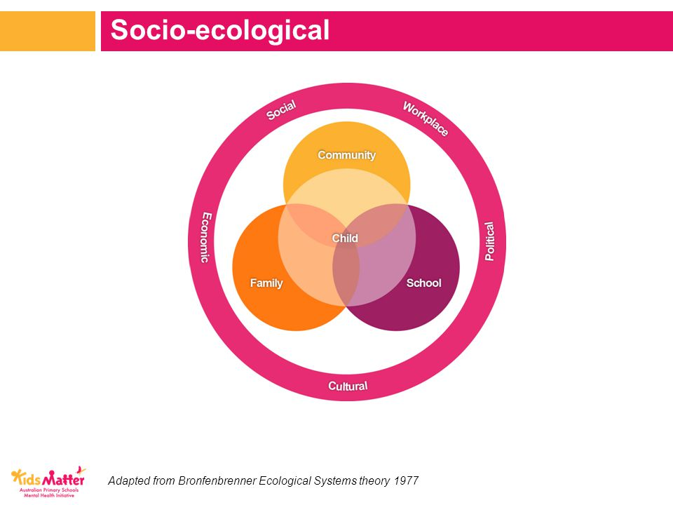 Adapted from Bronfenbrenner Ecological Systems theory 1977 Socio-ecological