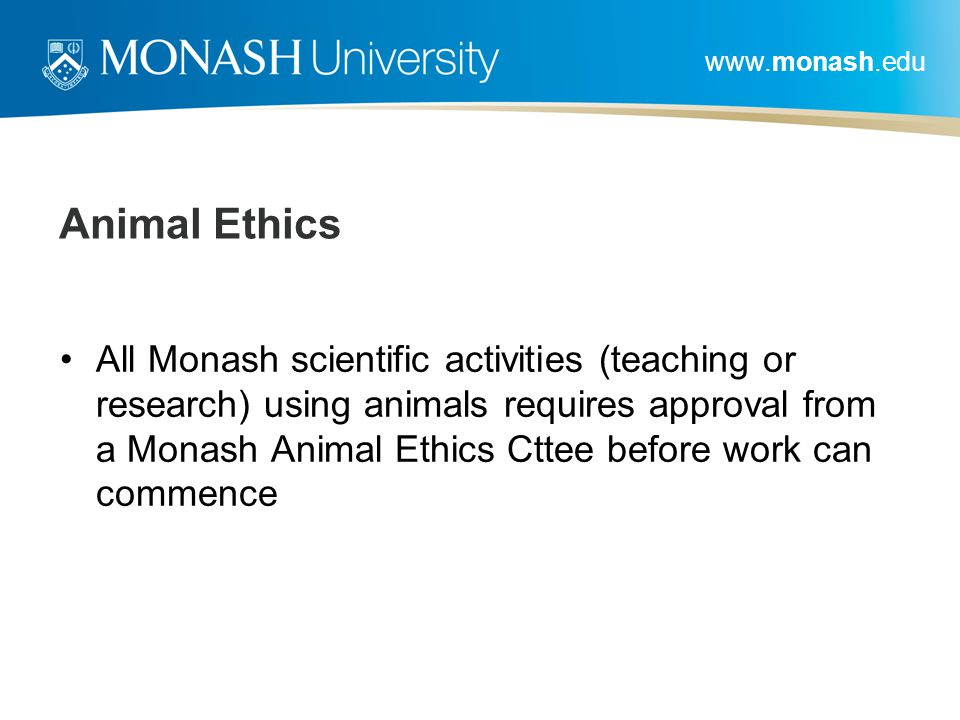 www.monash.edu Animal Ethics All Monash scientific activities (teaching or research) using animals requires approval from a Monash Animal Ethics Cttee