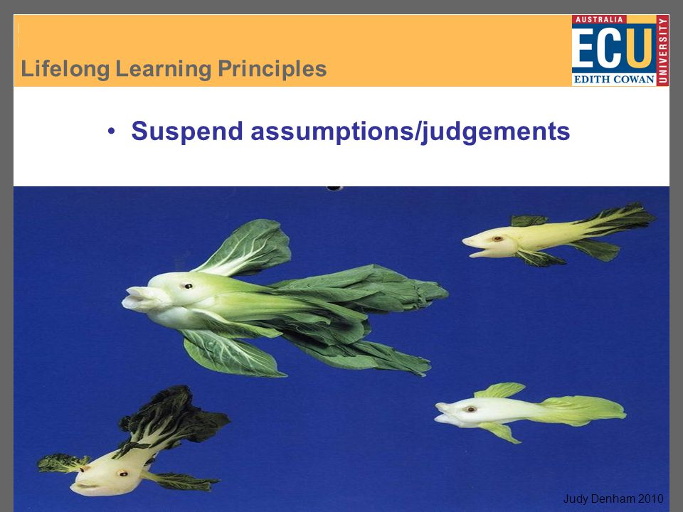 Lifelong Learning Principles J. Denham, 2007 Suspend assumptions/judgements Judy Denham 2010