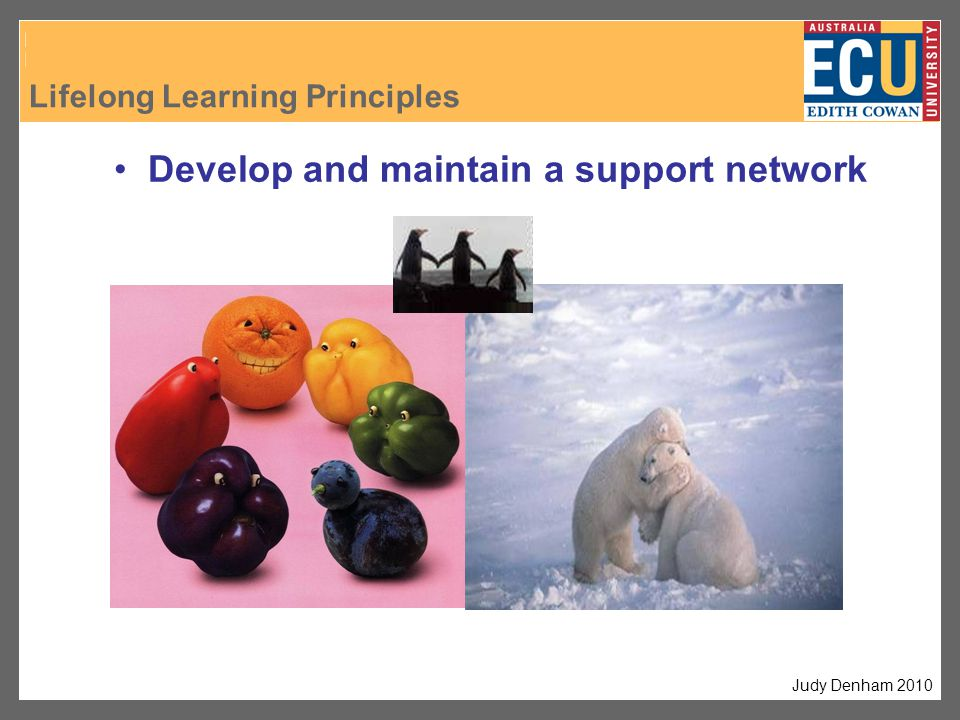 Develop and maintain a support network Judy Denham 2010 Lifelong Learning Principles