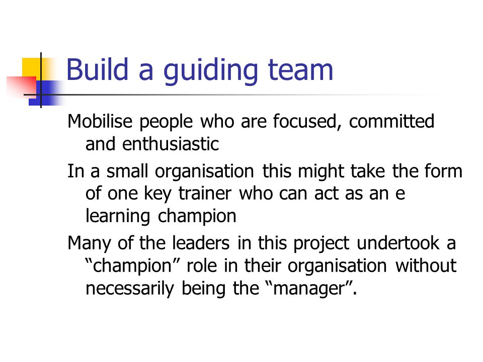 Build a guiding team Mobilise people who are focused, committed and enthusiastic In a small organisation this might take the form of one key trainer who can act as an e learning champion Many of the leaders in this project undertook a champion role in their organisation without necessarily being the manager .