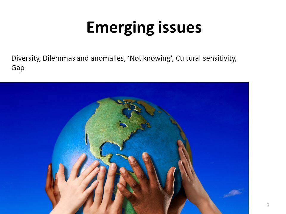Emerging issues Inter-cultural seminar -mk Nov 2013 Office.com Clip Art4 Diversity, Dilemmas and anomalies, 'Not knowing', Cultural sensitivity, Gap