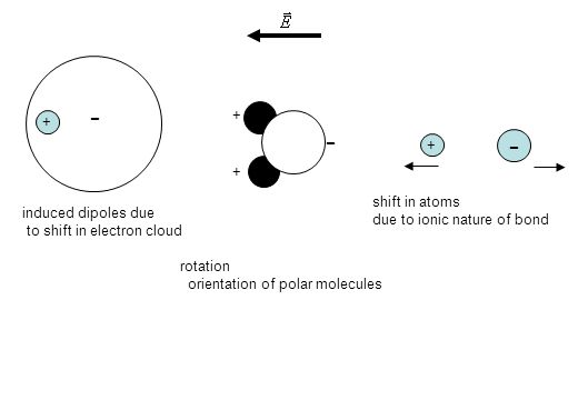 + - induced dipoles due to shift in electron cloud + + - rotation orientation of polar molecules - + shift in atoms due to ionic nature of bond