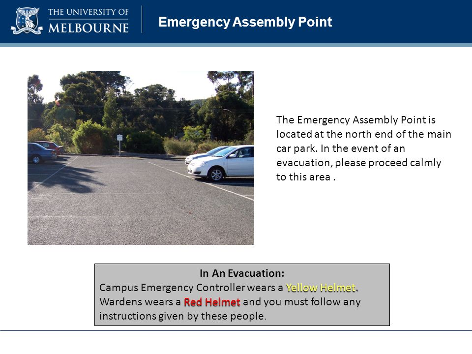 Emergency Assembly Point In An Evacuation: Yellow Helmet.