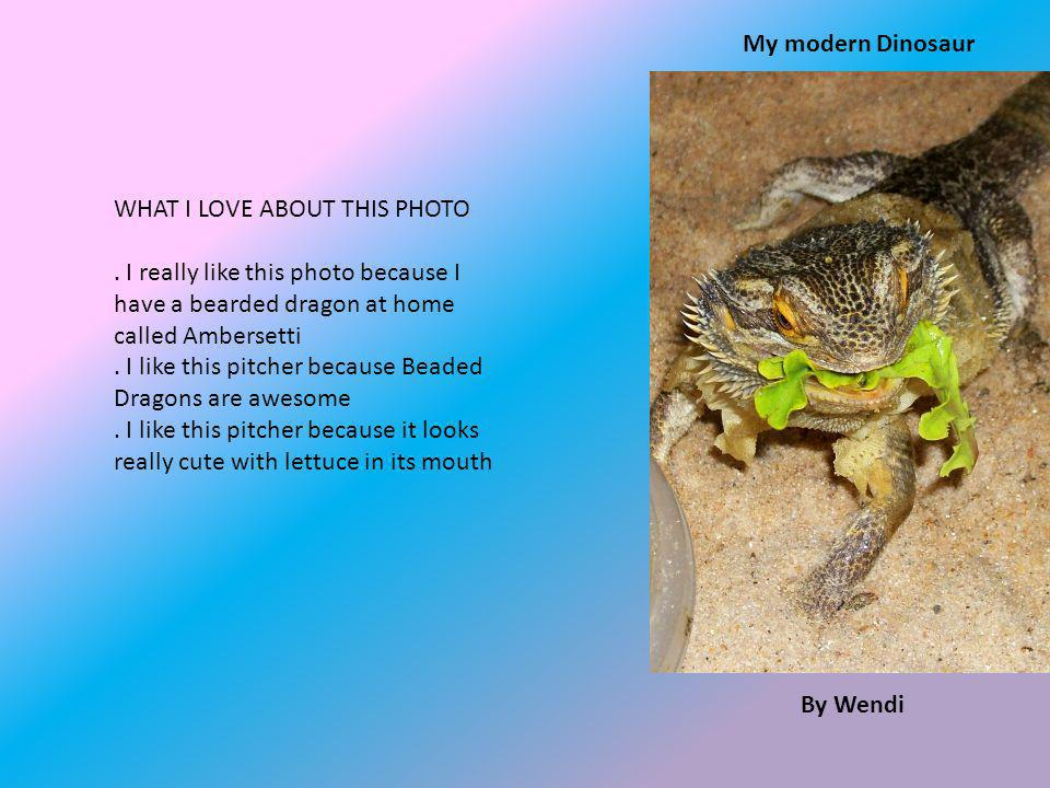 By Wendi My modern Dinosaur WHAT I LOVE ABOUT THIS PHOTO.