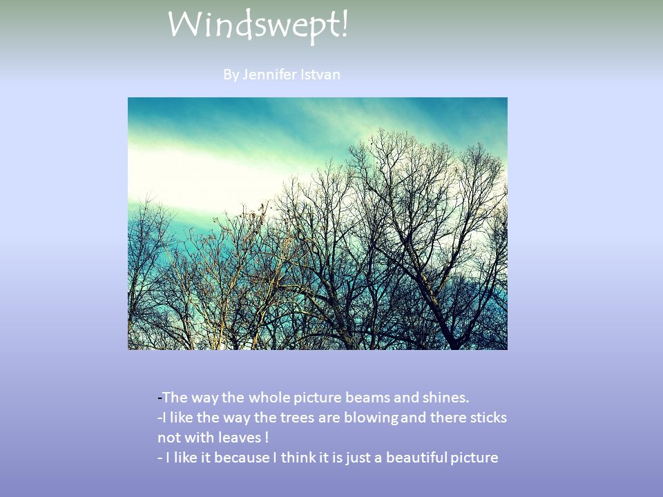 By Jennifer Istvan Windswept. -The way the whole picture beams and shines.