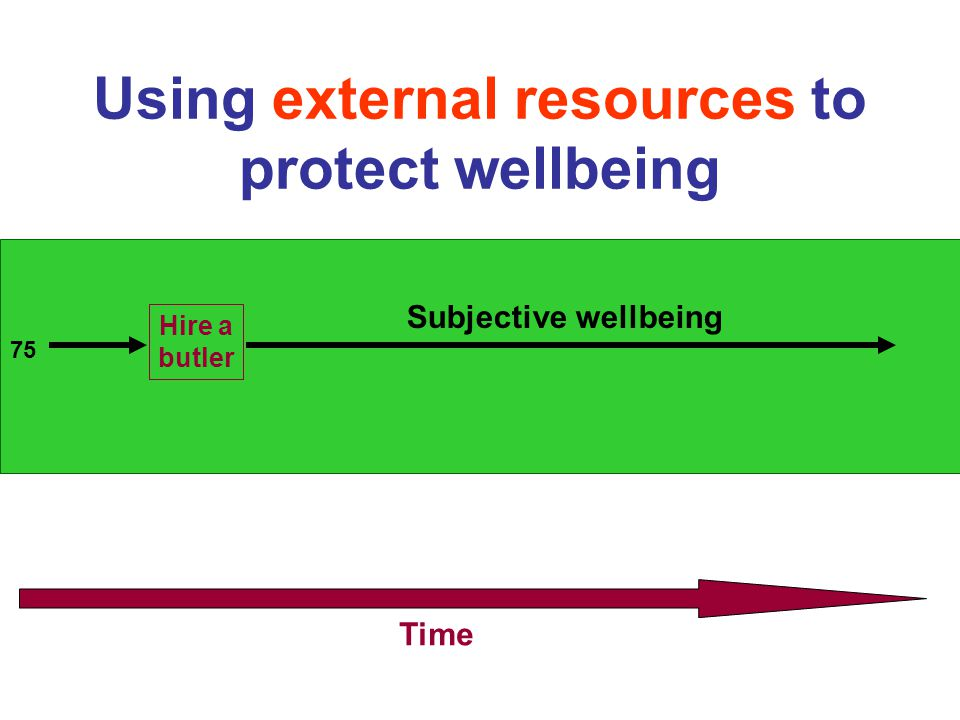 Using external resources to protect wellbeing 75 Time Hire a butler Subjective wellbeing