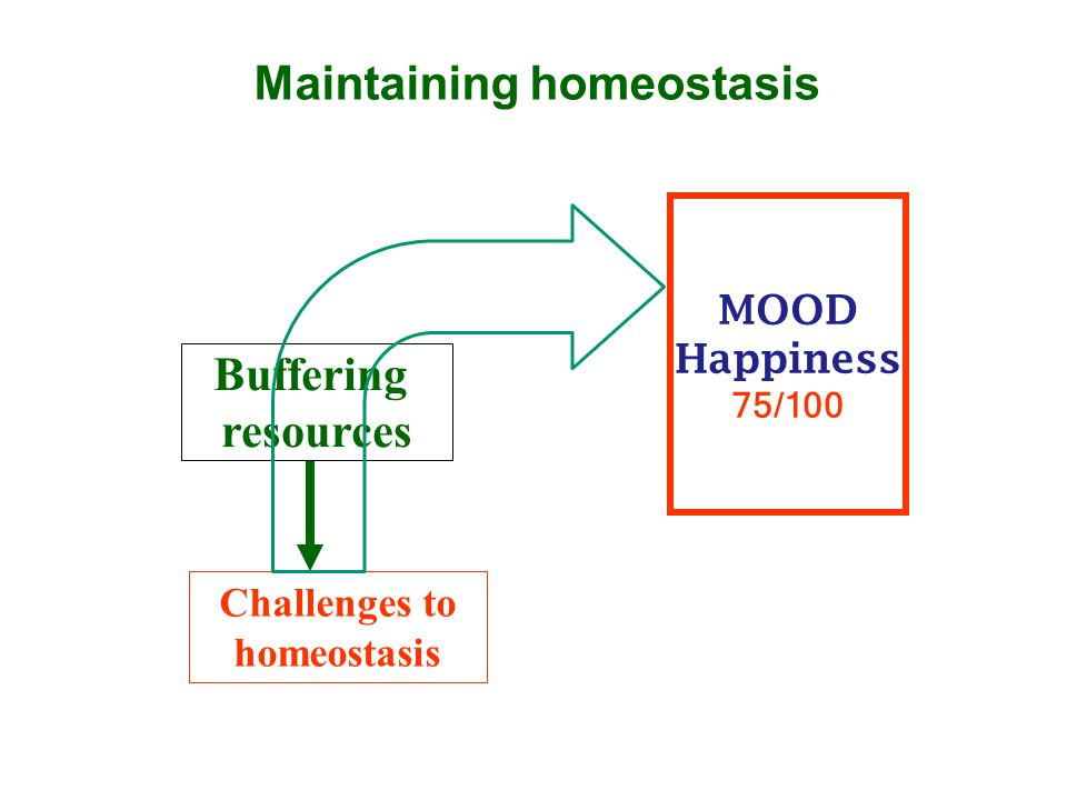 Maintaining homeostasis MOOD Happiness 75/100 Challenges to homeostasis Buffering resources