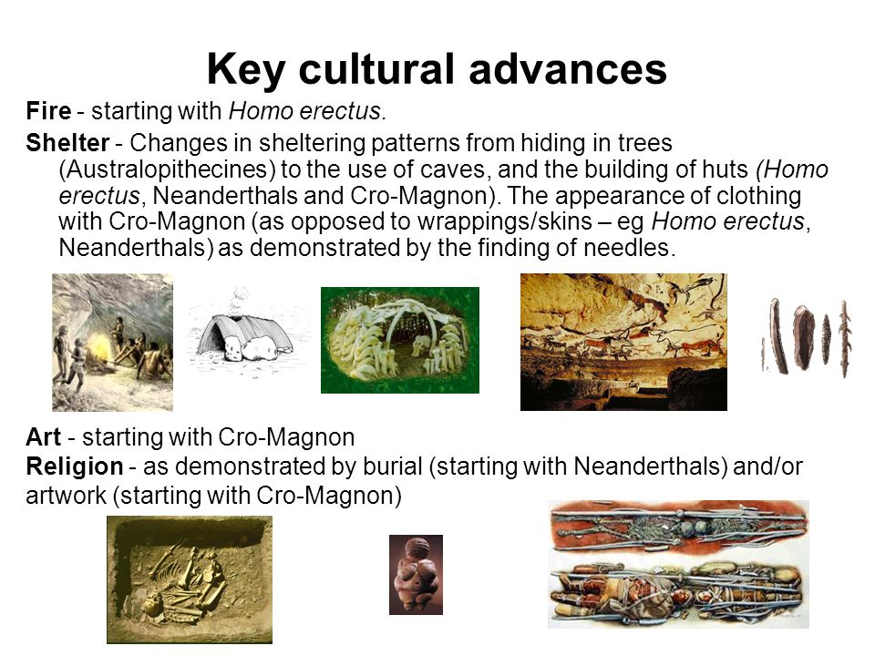 Key cultural advances Fire - starting with Homo erectus. Shelter - Changes in sheltering patterns from hiding in trees (Australopithecines) to the use