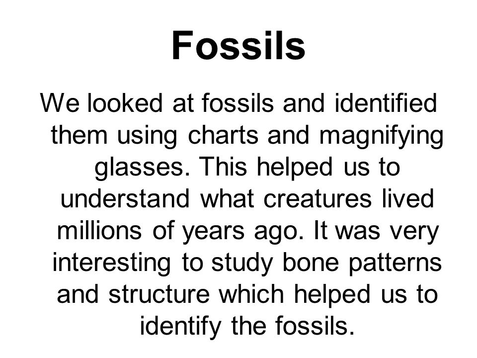 Fossils We looked at fossils and identified them using charts and magnifying glasses.
