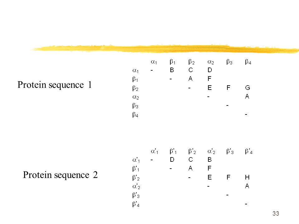 33 Protein sequence 1 Protein sequence 2